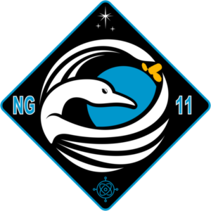 NG-11_patch